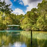 homosassa-springs-2