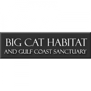 logo-big-cat-habitat