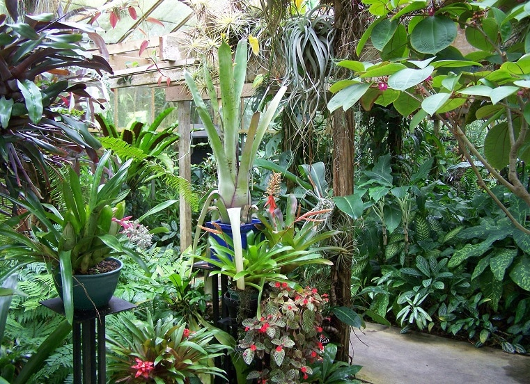 Marie Selby Botanical Gardens - FloridaAttractions.com - Find Your ...