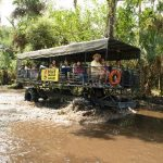 swamp-buggy