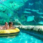 SeaWorld-Aquatica-Vacation-Ticket-1
